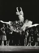 Karin Averty dans Don Quichotte