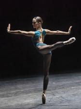 In the middle somewhat elevated (Forsythe)